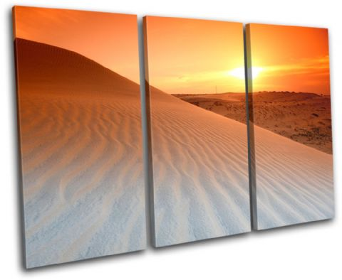 Desert Sunset Landscapes - 13-1092(00B)-TR32-LO